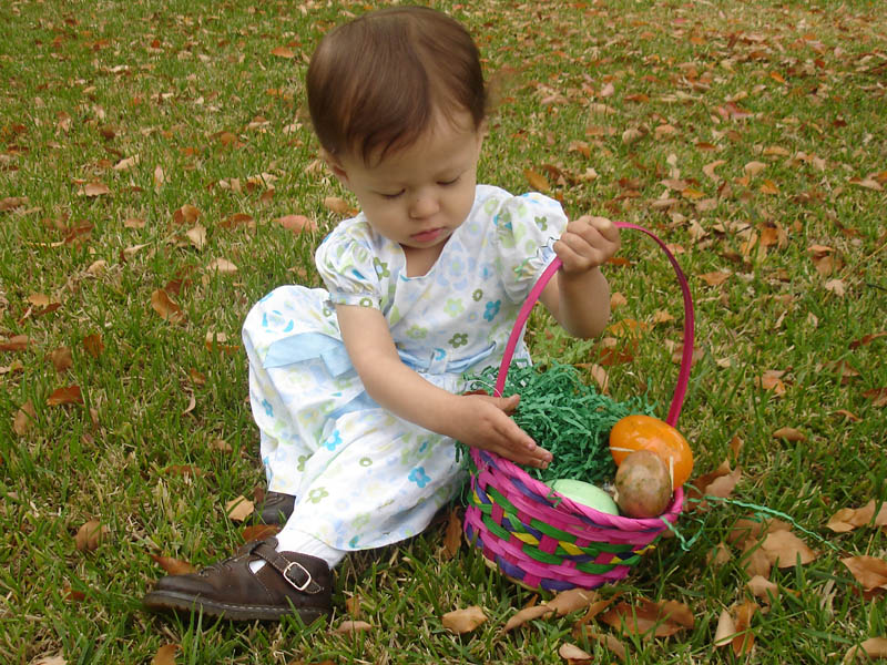Jezebel adeptly hunts Easter eggs.