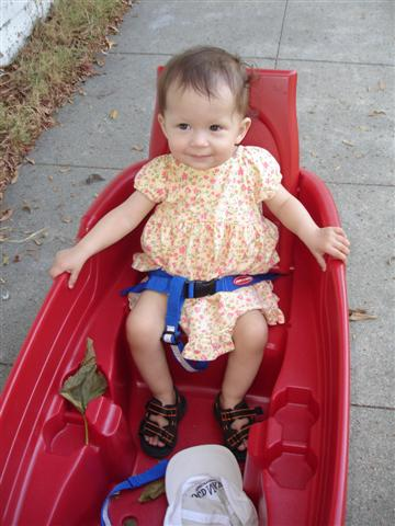 Jezebel In the Wagon